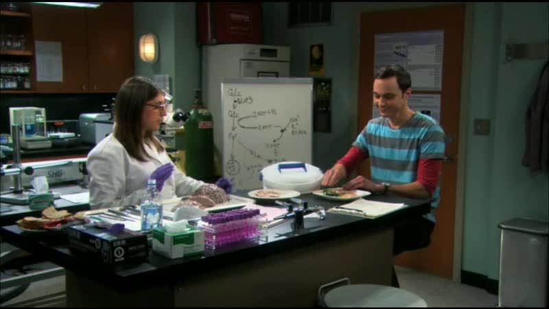 [4х10] Шелдон помогает Эми понять ее болезнь