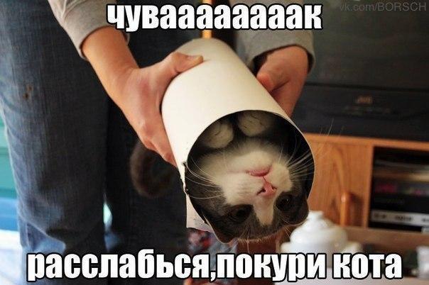 http://cs317420.userapi.com/v317420048/5317/_pXsjgaVtzk.jpg