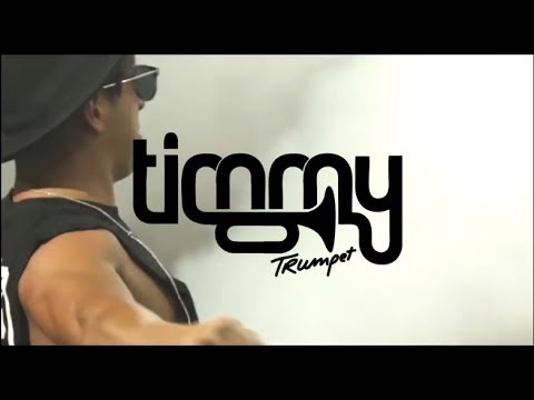 TIMMY TRUMPET VINI VICI DJ CARNAGE - THIS IS PSY STYLE (VIDEO HD HQ)