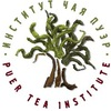Институт чая Пуэр