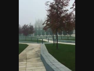 Видео: entropina В парке туманно, загадочно, птицы поют