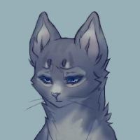 картинки коты воители синяя звезда