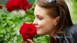 Ведь в розе мира красота! In the rose the world is beauty