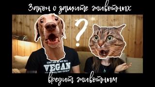 Почему  новый ЗАКОН О ЗАЩИТЕ ЖИВОТНЫХ вредит животным    Vegan Family    Как помочь животным