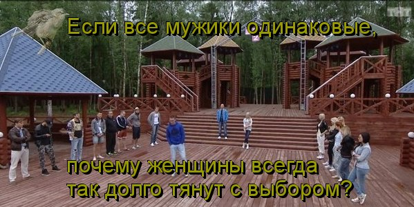 http://cs608720.vk.me/v608720041/c502/M24bZW69IzU.jpg