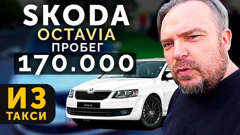Skoda Octavia A7 1,6 MPI. Шкода Октавия автообзор, тест драйв ТИХИЙ ЛЕНИВЫЙ