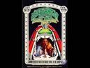 Janis Joplin The Kozmic Blues Band Live at Winterland S F march 20 22 1969