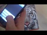 Краткий Обзор IPhone 5!