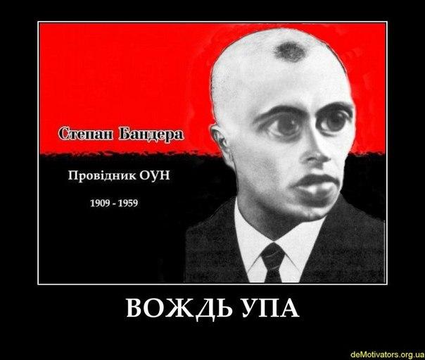 GNsfrqryamQ.jpg