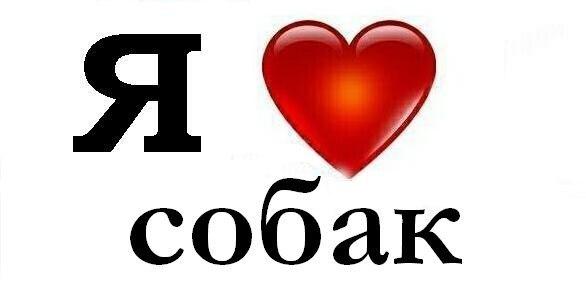 http://cs315531.vk.me/v315531399/c714/IVN5nqcbClk.jpg
