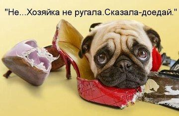 Если обувь на размер больше