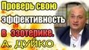 Проверь свою эффективность в эзотерике. Андрей Дуйко школа Кайлас