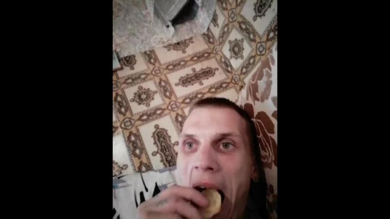 КОЛОВРАТ - Live