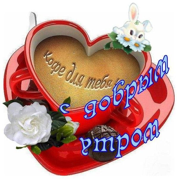 http://pp.vk.me/c418424/v418424782/d4c/wfoPBHqr8wE.jpg
