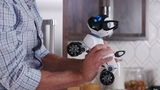 Meet CHiP The World's First Lovable Robot Dog
