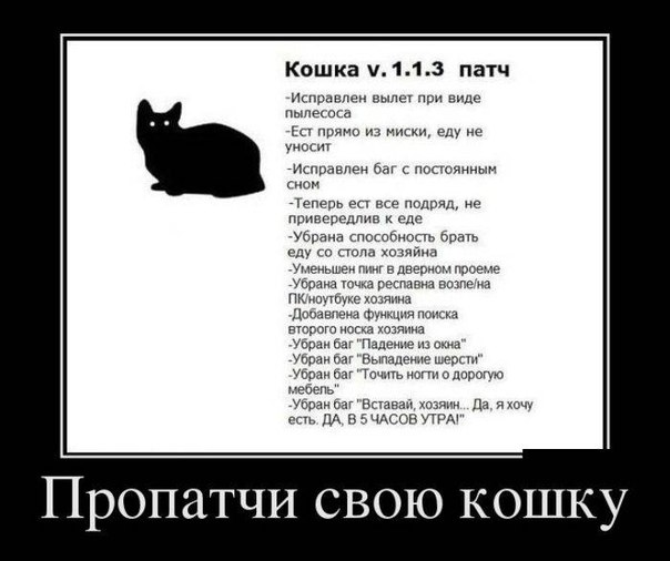 http://cs421724.userapi.com/v421724266/b61/MMp8bO2B2-g.jpg