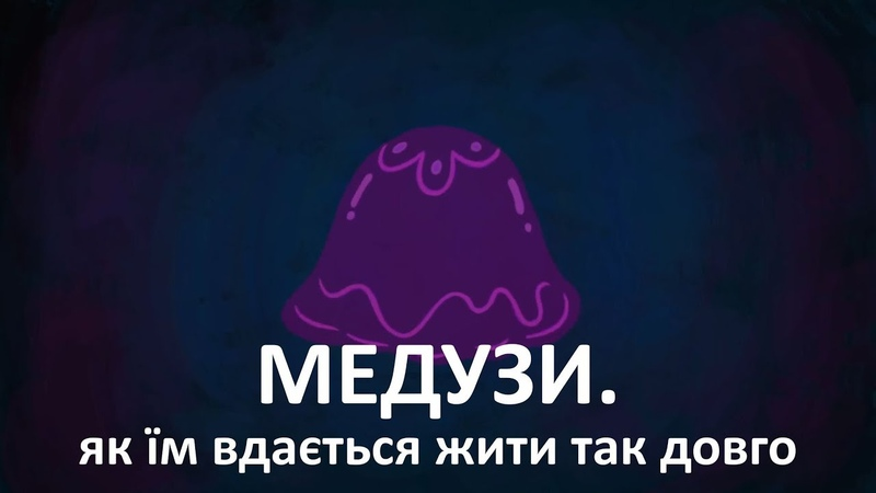 Медузи. Як їм вдається жити так довго [TED-Ed]