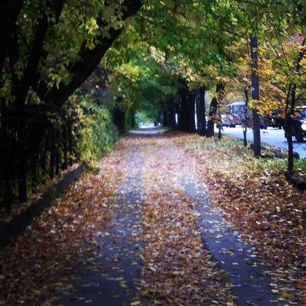 осень в кирове фото