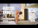 Hardcore Animals karaoke: Blur - Song 2