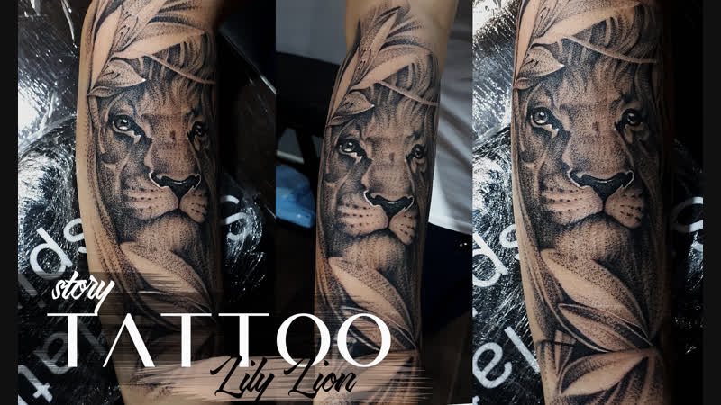 Tattoo story Lily lion