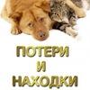 ПОТЕРИ И НАХОДКИ ЖИВОТНЫХ в Воронеже.