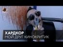 МойДругКинокритик «Хардкор»