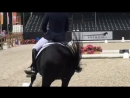 Horsetelex Edward Gal on Total US semi final 85 8
