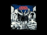 Captain Cleanoff - Rising Terror FULL ALBUM (2015 - Grindcore)