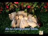 Котята (стихи С. Михалкова)