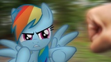 Rainbow Dash's Precious Book - Part 14 (MLP in real life)