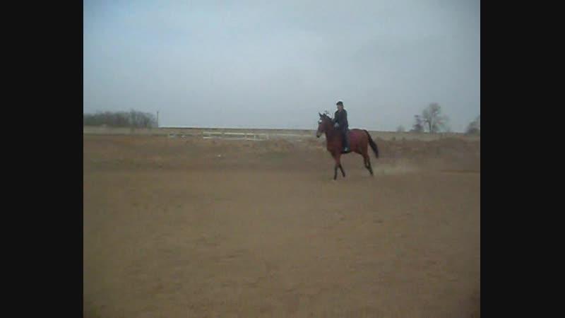 Кирилл и Бэкка 20.11.2011