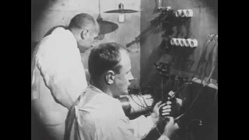 Механика головного мозга 1926
