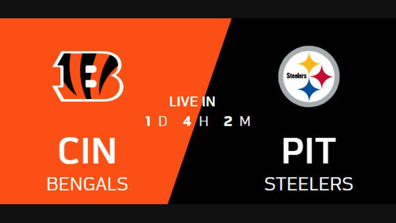 NFL 2018 Week 17 CG Cincinnati Bengals - Pittsburgh Steelers EN
