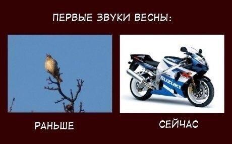 Судя по звукам весна уже началась))