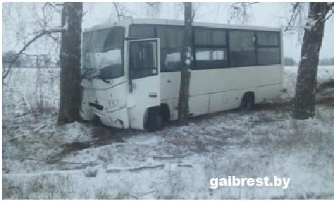 В результате наезда на придорожное дерево травмирована пассажирка автобуса