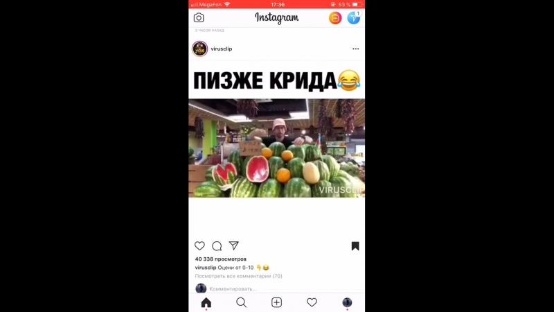 Пизже Егора крида)