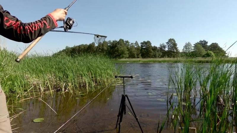 Рыба линь на реке в мае. Ловля линя на фидер. Готовим рыбу на природе.mp4