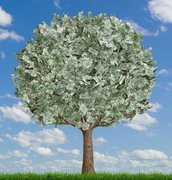 Данная медитация укрепляет связь с денежным деревом и увеличивает ваши доходы.