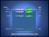 Lure Colors Part 1: Understand How Lure Colors Look To Fish