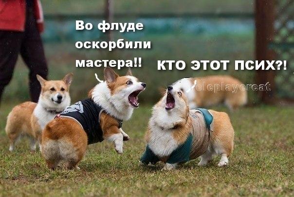http://cs315922.vk.me/v315922910/5451/dPmQI-sR6YU.jpg