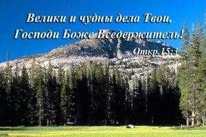 http://cs323722.userapi.com/v323722796/355b/CQo-6p9dbdc.jpg