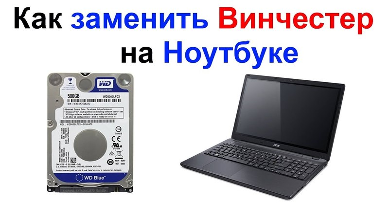 Как заменить жесткий диск (винчестер) на ноутбуке Самоделкин