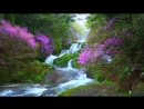 SPIRIT OF THE EARTH ДУХ ЗЕМЛИ Stive Morgan