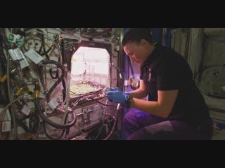 Nasa показало космос в разрешении 8k (first 8k video from space)    высокие технологии