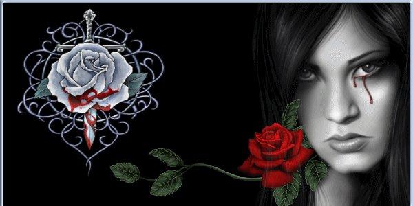 http://cs01.vkontakte.ru/u34145/533656/x_9ff09203cf.jpg