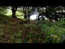 BBC.Velichajshie.bitvy.v.istorii.Britanii.(6.serija.iz.8).Bitva.u.reki.Bojn.1690.god.2004.XviD.DVDRip.ExKinoRay