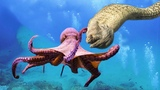 Big battle in the Pacific! Octopus vs Moray eel - Who will be the winner