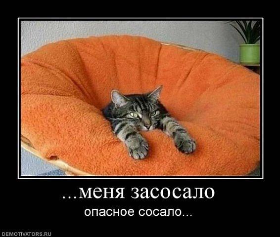 http://cs10001.userapi.com/u38189175/115482644/x_eef9fff7.jpg