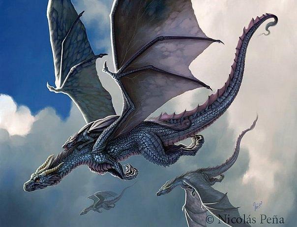 Книга гарри поттер драконология купить