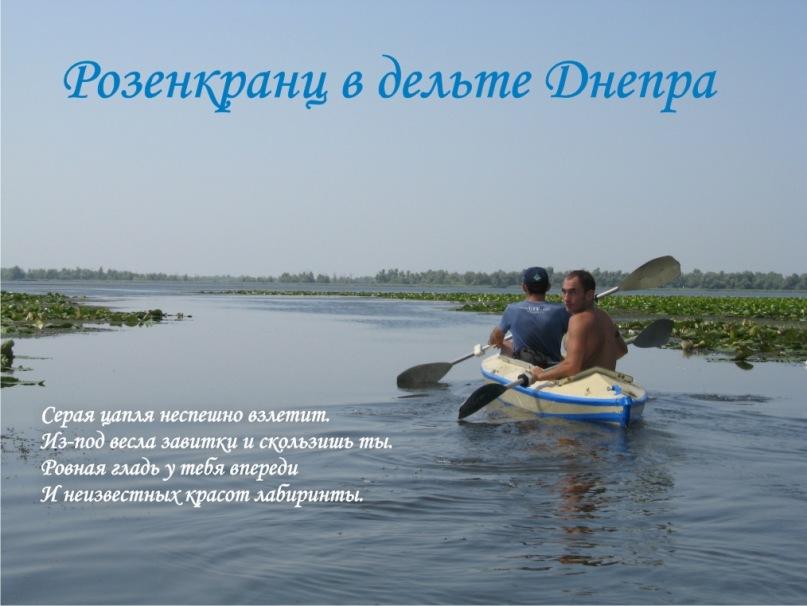 http://cs10011.vkontakte.ru/u10834284/120259584/y_11adf40b.jpg